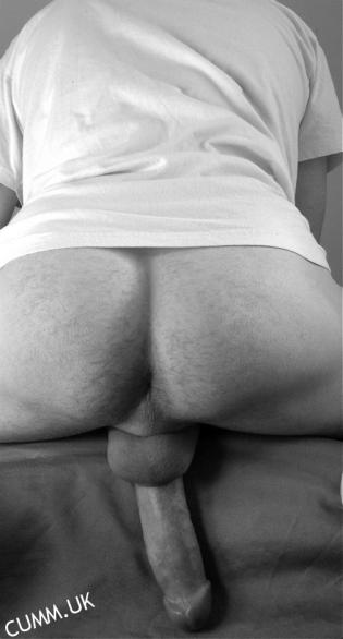 hairy-arse-erect1