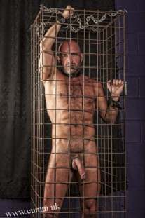 man in cage wearing collar and cock ring