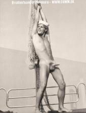 sailors vintage erection playfull