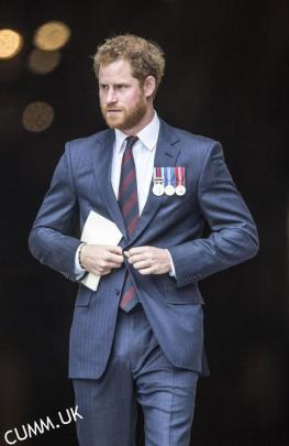 royal prince bulge