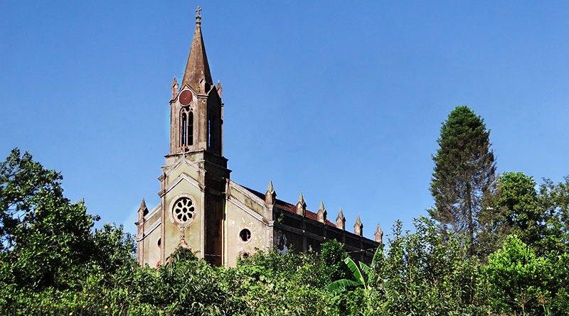 igreja são pedro apóstolo vista em segundo plano, atrás de vegetação