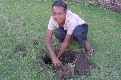 My host sister planting trees