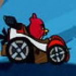 Angry Bird đua xe