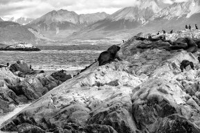 Patagonia - Ushuaia