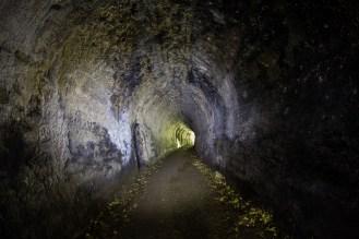 Portals5