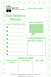 Daily Wellness Planner EXAMPLE