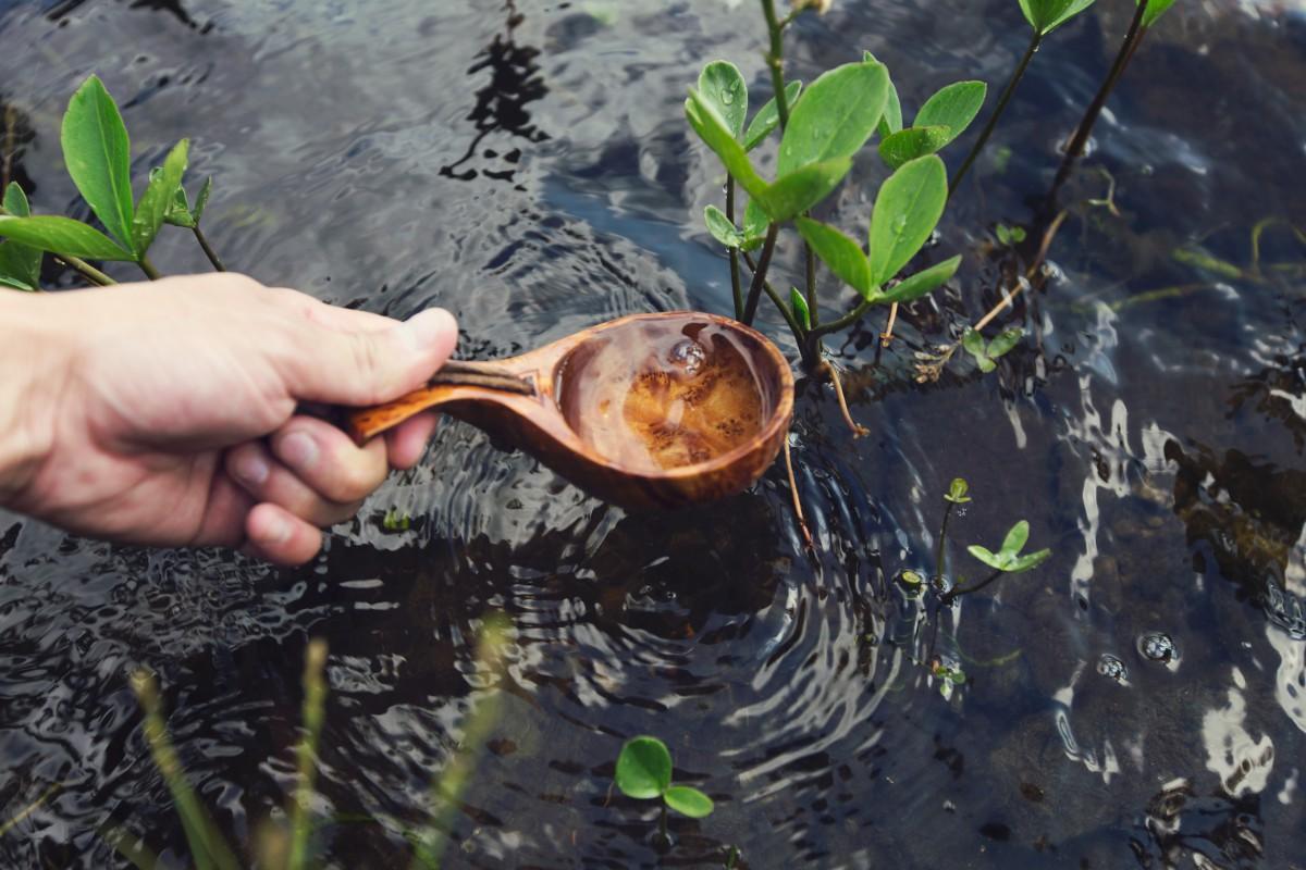 Agua en la naturaleza