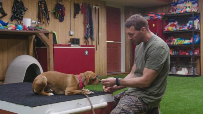 Cupid's Pulse Article: Celebrity News: A Brand New Episode of 'Lucky Dog' with Host Brandon McMillan Will Warm Your Heart
