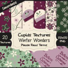 20 WINTERS WONDERS