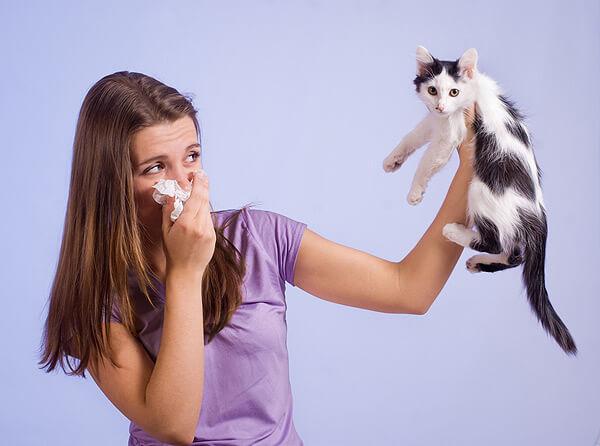 persoana-alergica-la-pisici
