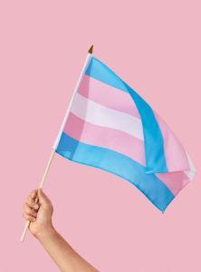 transgender-florida-diritti