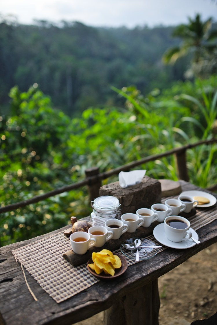 cuppajyo_travelblogger_fashion_lifestyle_bali_ubud_travelguide_10