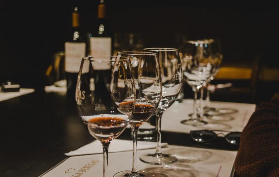 wine tours around Mendoza wine tasting mendoza argentina lunlunta benegas vineyard