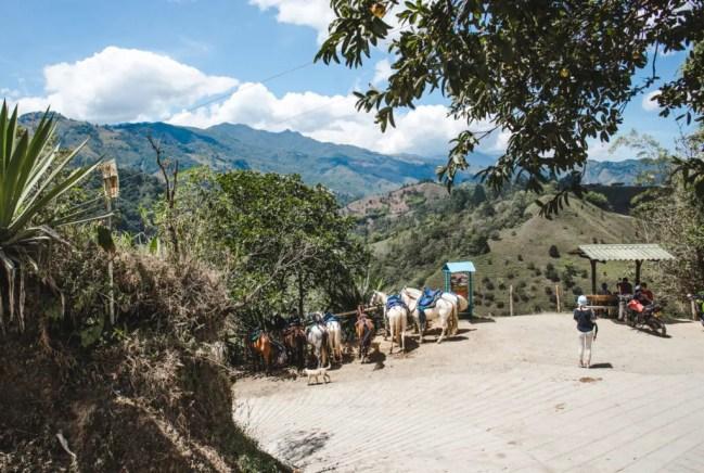 Horse tours in Salento Filandia Filandia, Colombia or Salento? Las Acasias coffee farm tour in Colombia's coffee region pueblos; what to do in Filandia, colombia