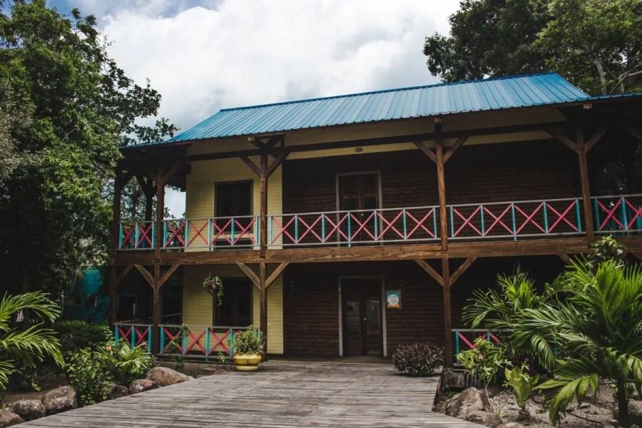 Cotton tree spa providencia island colombia