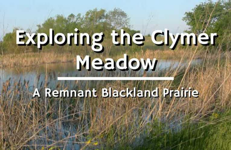 Exploring the Clymer Meadow Preserve