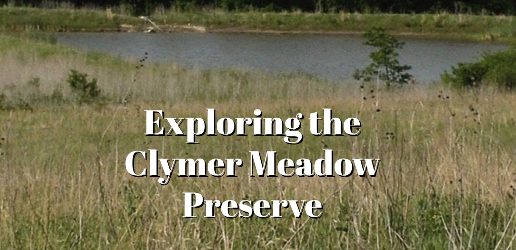 clymer meadow title card
