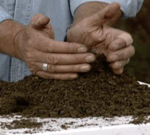 harvesting worm castings