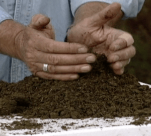 harvesting worm castings