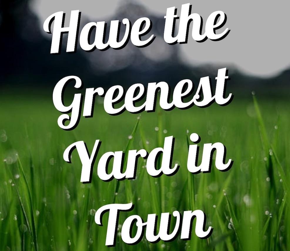 green lawn promo