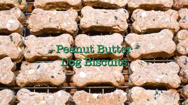 Peanut Butter Dog Biscuits 2