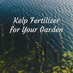 GardenRx: The Ultimate Organic Gardening Guide 2