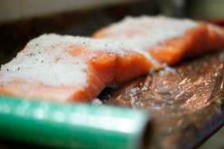 salmon-marinado_04