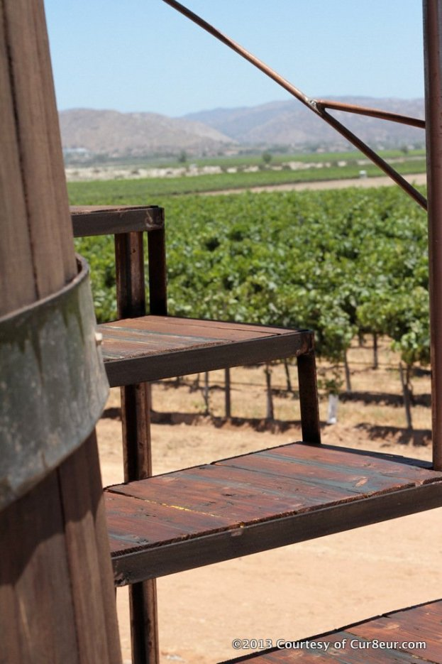 Finca Altozano - Staircase to Wine Barrel