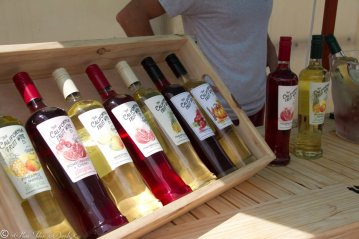 California Fruit Wines; San Diego Restaurant Week Launch Party 2015, Encinitas CA at Go Green Agriculture
