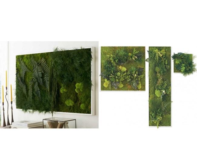 Indoor Vertical Wall Garden Wall Art