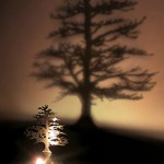 Chic Lighting Adam Frank Lumen Oil Candle Shadow Projectors $48