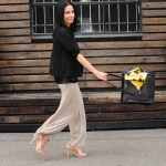 Wide Leg Chiffon Pants – Making Cool Look Easy