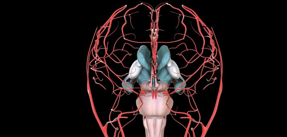 New Treatment Target for Fibromyalgia: Inflammation in the Brain