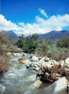 Deer Creek-Creek flowing MS-VERT-H348px