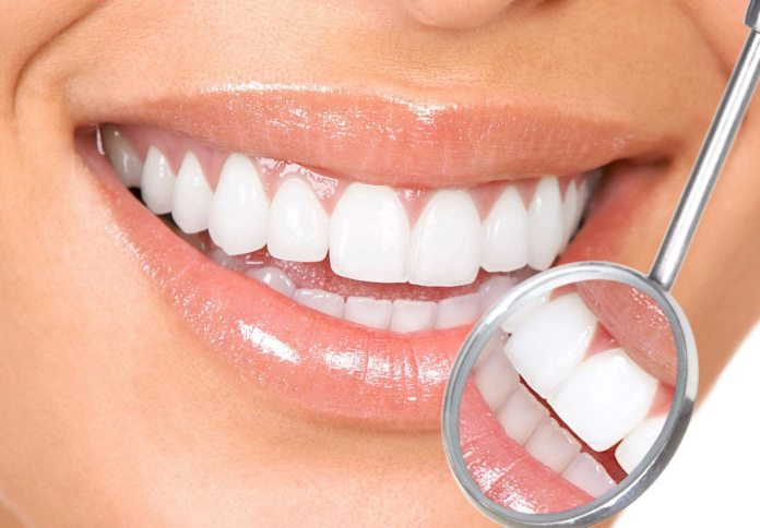 Healthy Teeth and Gums from the Inside Out : Natural Oral Care