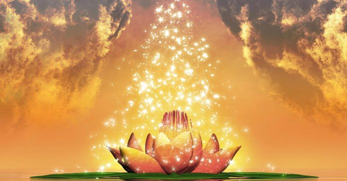 Accept, Retreat & Surrender How to Heal Yourself