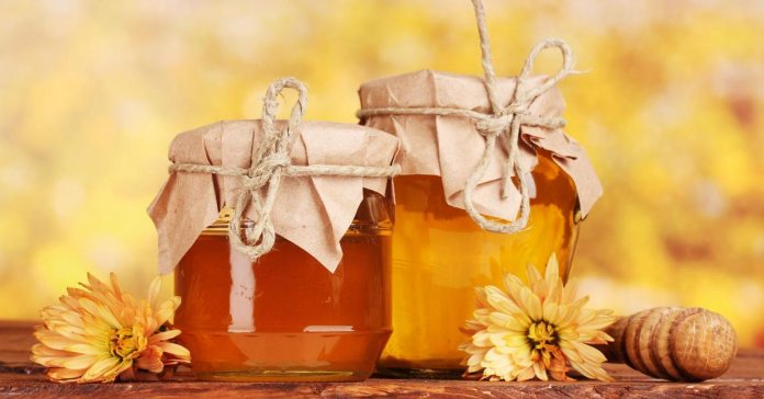 Honey - The Perfect Antibiotic Capable of Solving The Problem of Antibiotic Resistance