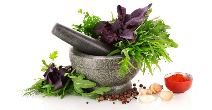 When Antibiotics Fail_Are Herbs the Answer