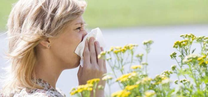 6 Natural Remedies For Seasonal Allergies