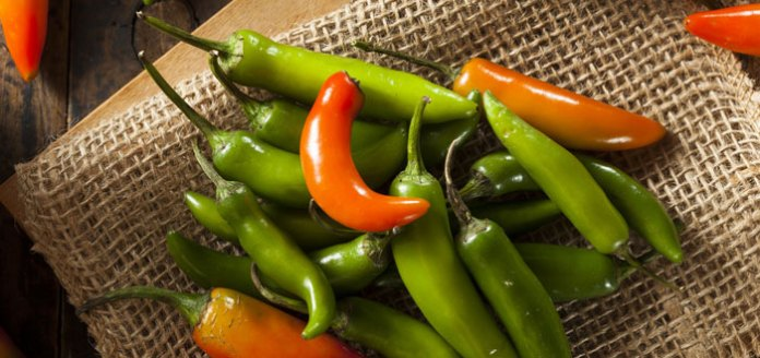 Fire Up Your Weight Loss Diet With Spicy Green Chillies.