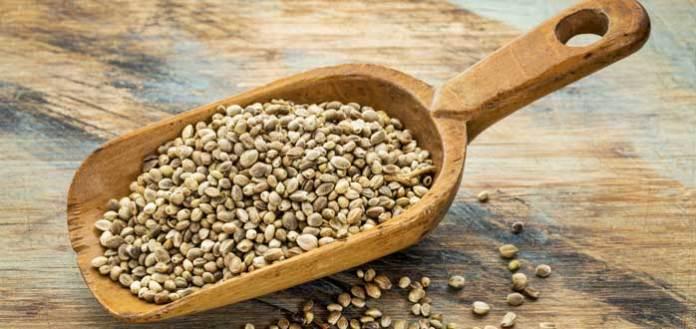 Hemp Seeds A Nutrient-Dense Super Food.