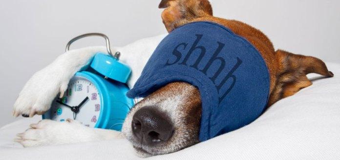Nap Your Way Optimal Health.