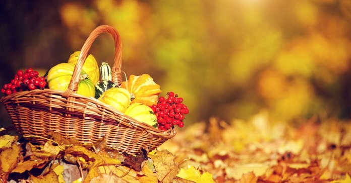 5 Ayurvedic Ways to Stay Healthy This Fall.