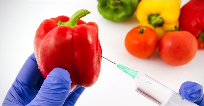 Are Synthetically Modified Foods The New GMOs?