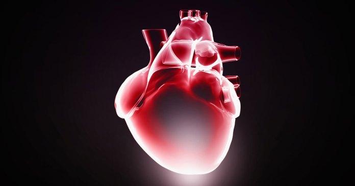 8-improves-heart-health