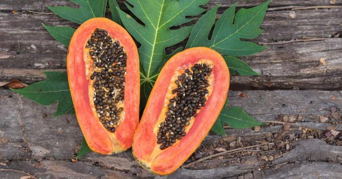 Papaya Seeds Benefits