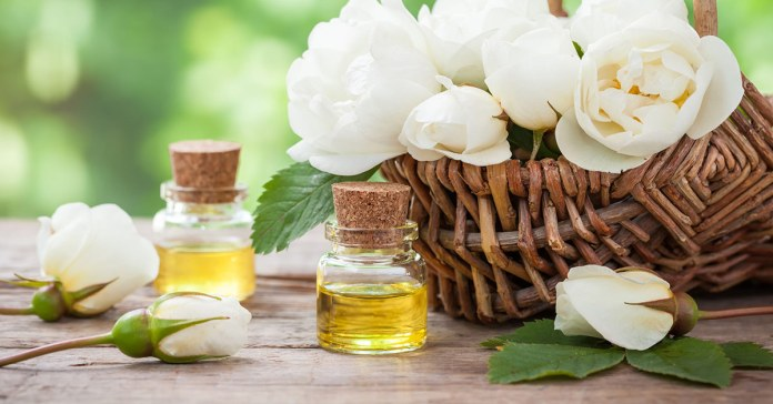 Get Healthy Now With The Power Of Oregano Oil