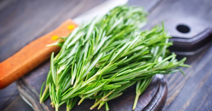 5 Ways Rosemary Can Improve Your Skin and Health