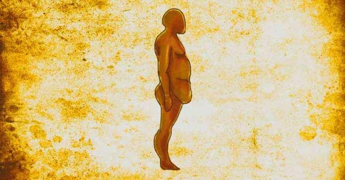 visceral abdominal fat