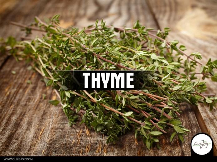 10-Thyme